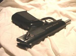 wapen-522x391